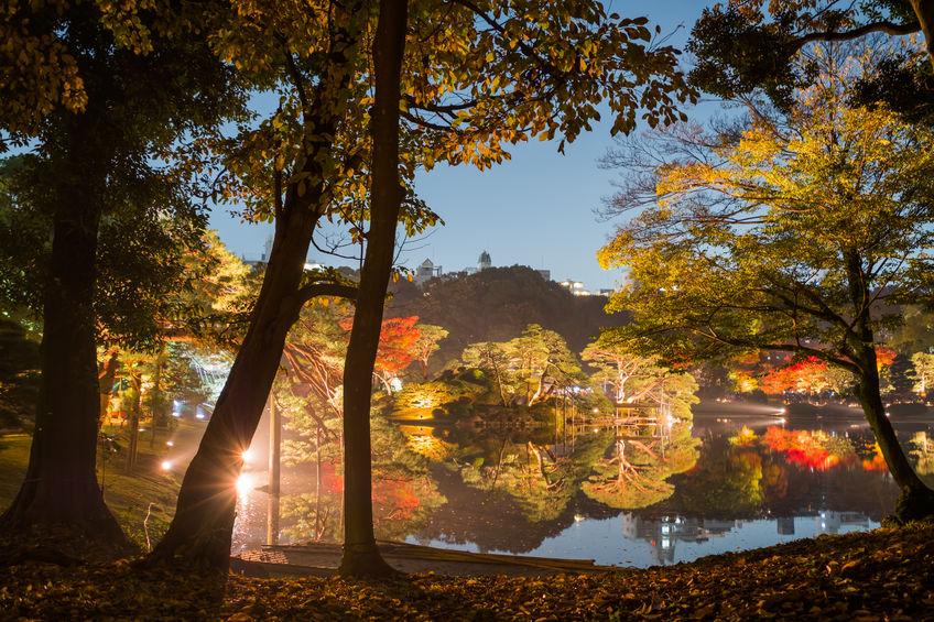 Autumn illumination at Rikugien Garden